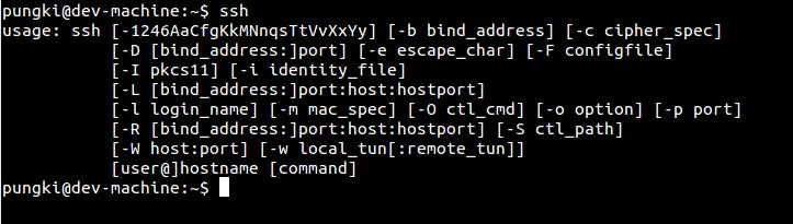 An ssh client