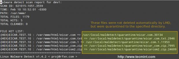 Linux恶意软件扫描报告