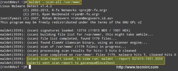 扫描Linux中的恶意软件