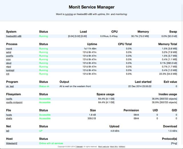 server-monitoring-tool-monit