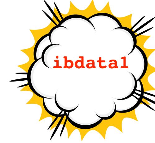 ibdata1 file