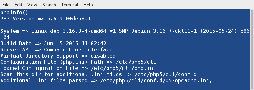 PHP Info Output