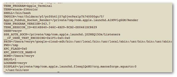 Fig.01: Unix/Linux: 列出所有环境变量