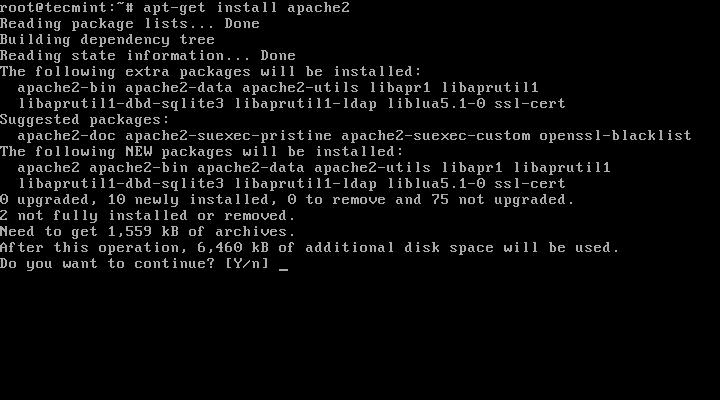 Install Apache Web Server