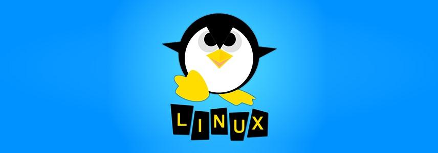 全球国家级Linux项目介绍