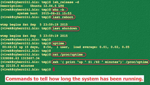 Fig.01: Various Linux commands in action to find out the server uptime