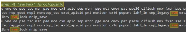 检查 KVM 支持
