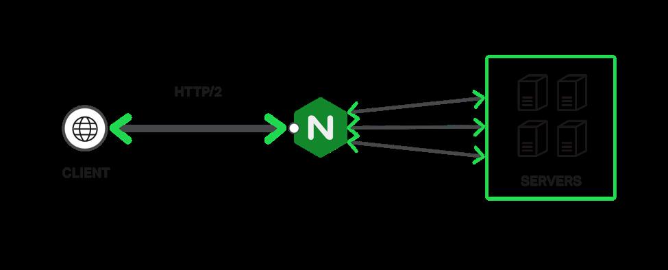 终止 HTTP/2 和 TLS