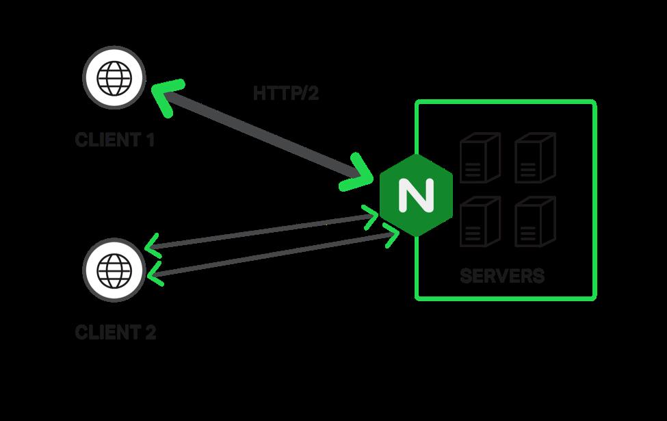 在服务器支持 HTTP/2 和 HTTP/1.x