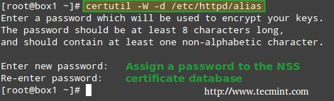 为 NSS 数据库设置密码