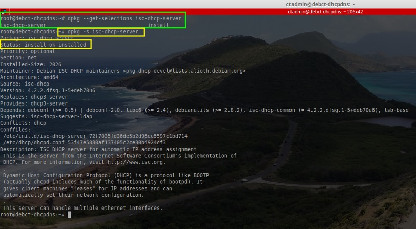 Install ISC DHCP Server in Debian