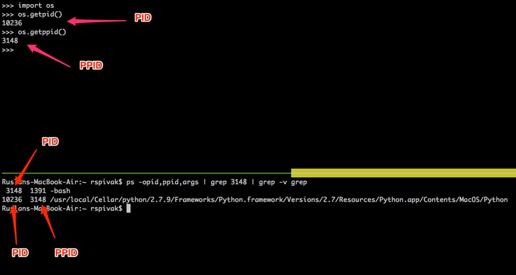 Mac OS X系统下进程ID与父进程ID演示