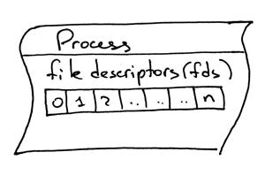 文件描述符