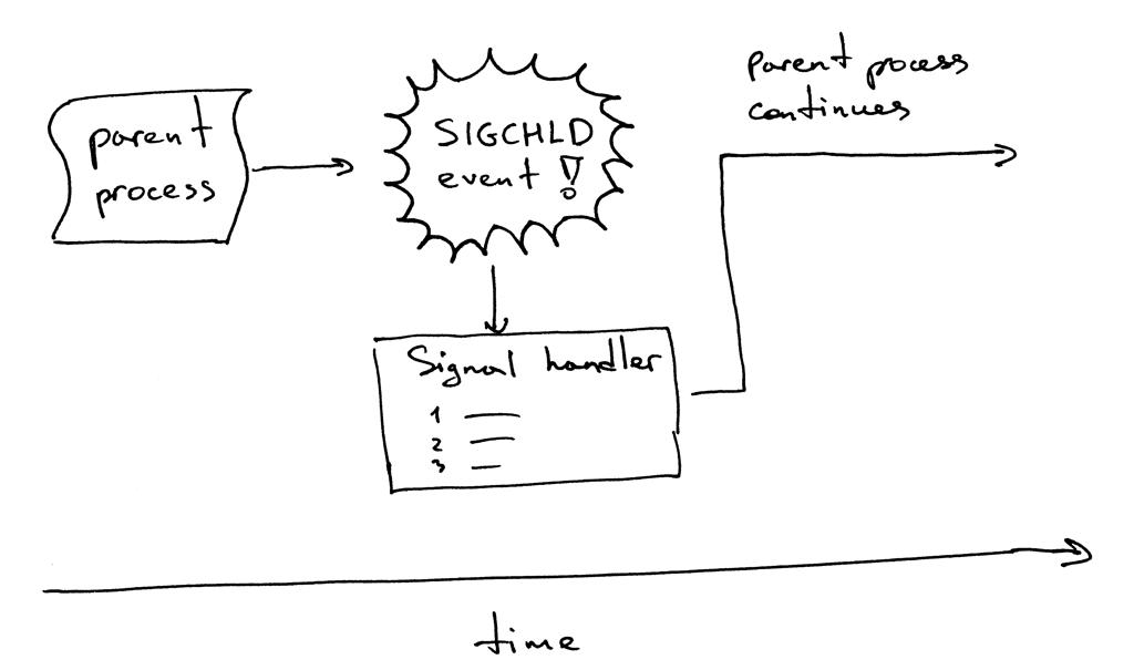 SIGCHLD信号与wait函数结合使用