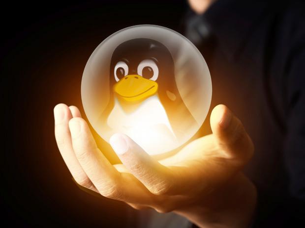 Linux 新一年态势展望