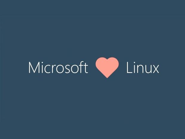 微软将扩张自身开源活动