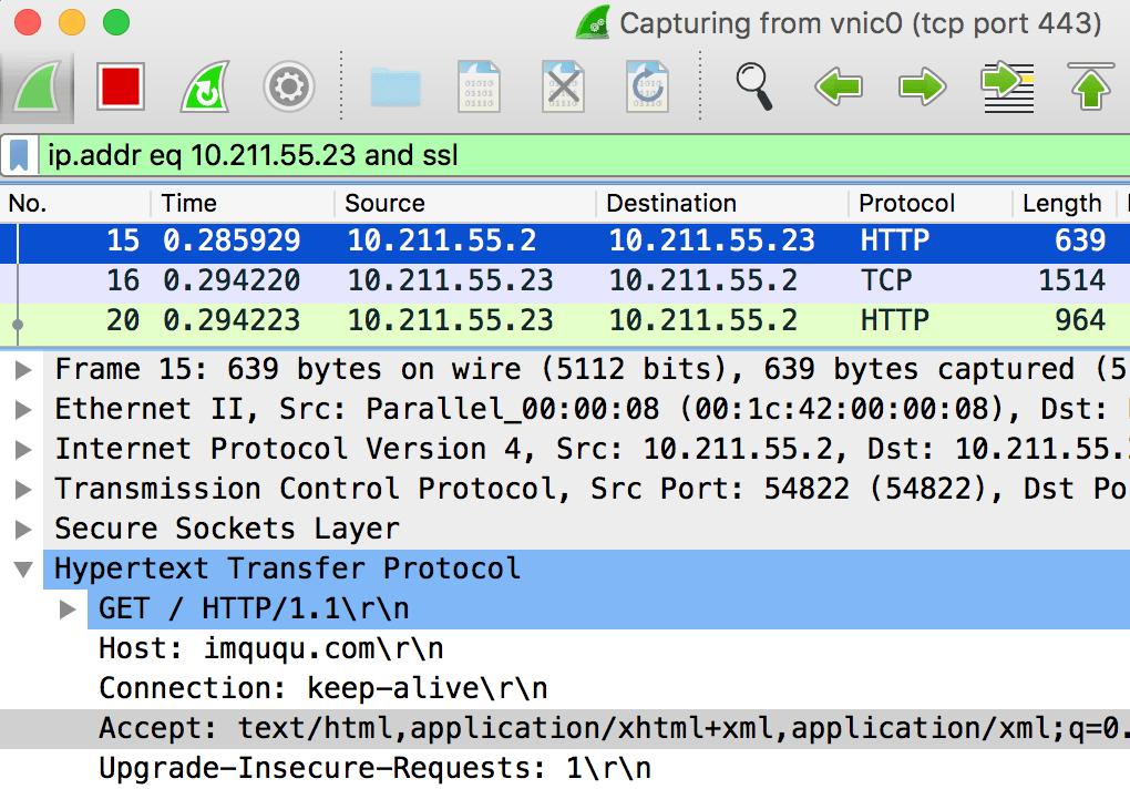 decrypt http1 over tls