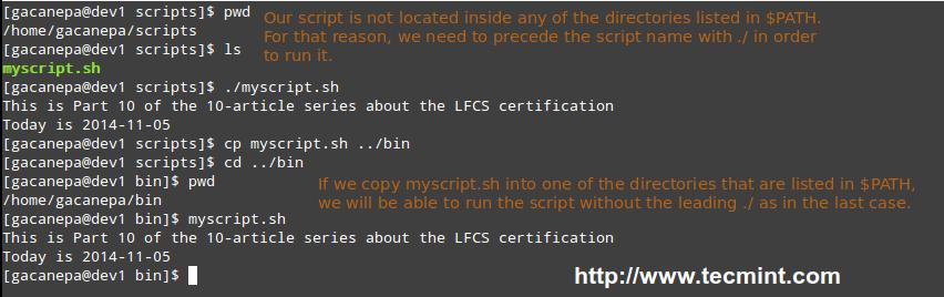 Execute Script in Linux