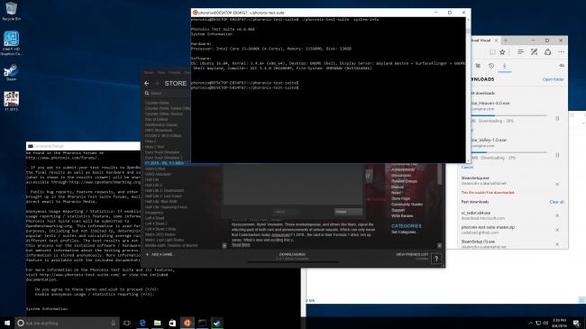 Windows 的 Linux 子系统