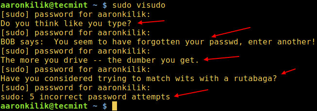 sudo Insult in Action