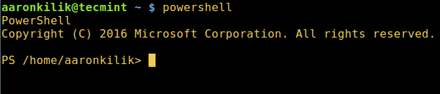 Start Powershell in Linux