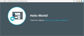 图9 IBM Bluemix Java应用程序
