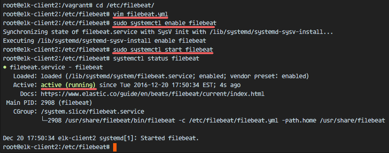 Filebeat is running on the client Ubuntu