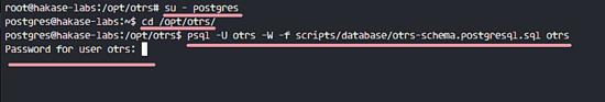 Import OTRS Sample Database