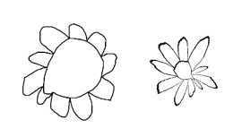 Sunflower turned into a daisy with r -> r cubed