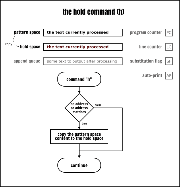 The Sed hold command