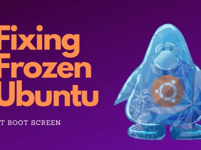 解决 Ubuntu 在启动时冻结的问题