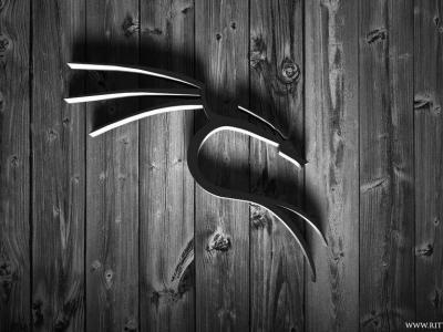 用于黑客渗透测试的 21 个最佳 Kali Linux 工具
