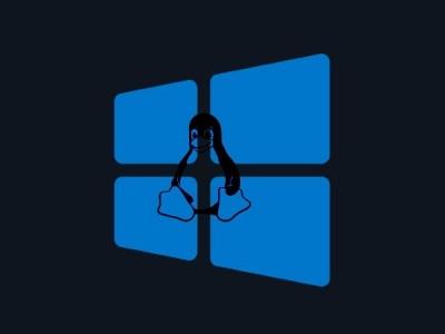 在 Windows 中运行 Linux:WSL 2  使用入门