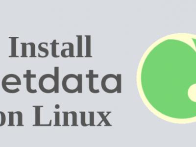 在 Linux 上安装 NetData 性能监控工具