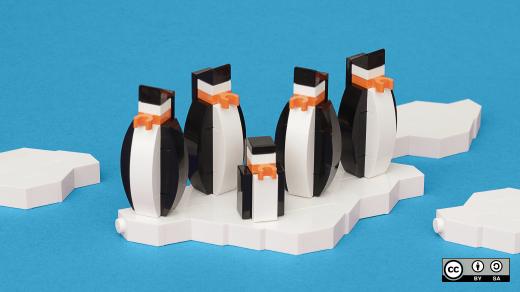 5 pengiuns floating on iceburg