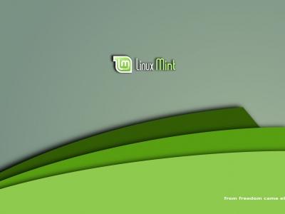 如何在 Linux Mint 中更换主题