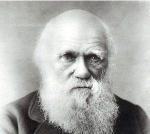 查尔斯·达尔文