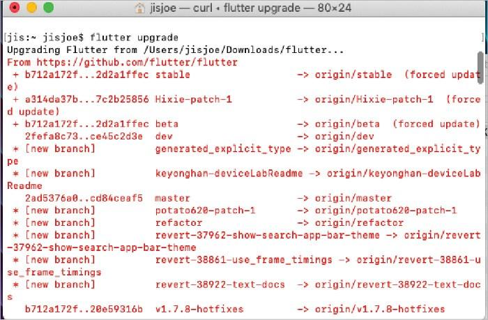 图 1: 升级 Flutter 到最新版