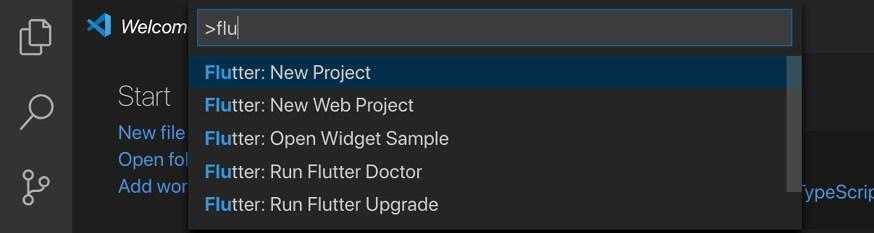 图 2:在 VSC 中开始一个新的 Flatter 项目