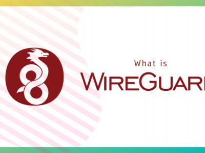 什么是 WireGuard?为什么 Linux 用户为它疯狂?