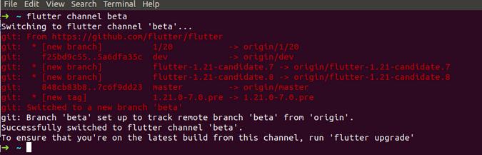 flutter channel beta output