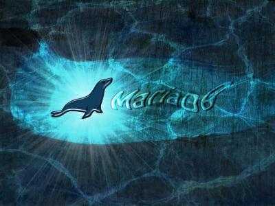 备忘单:提升你的 MariaDB 和 MySQL 数据库技能