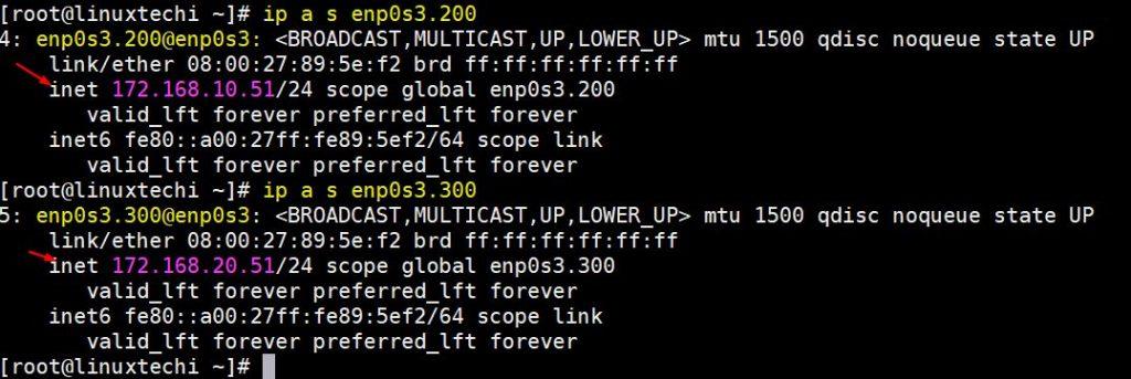ip-address-tagged-nic