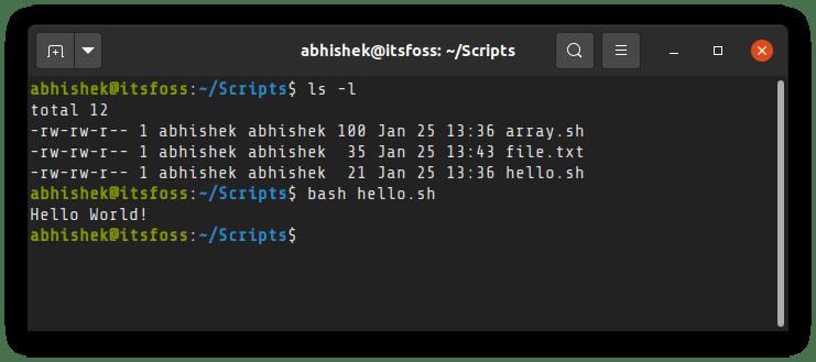 在 Linux 中运行一个 Shell 脚本