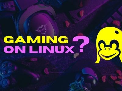 2021 年了,我们能推荐使用 Linux 来玩游戏吗?